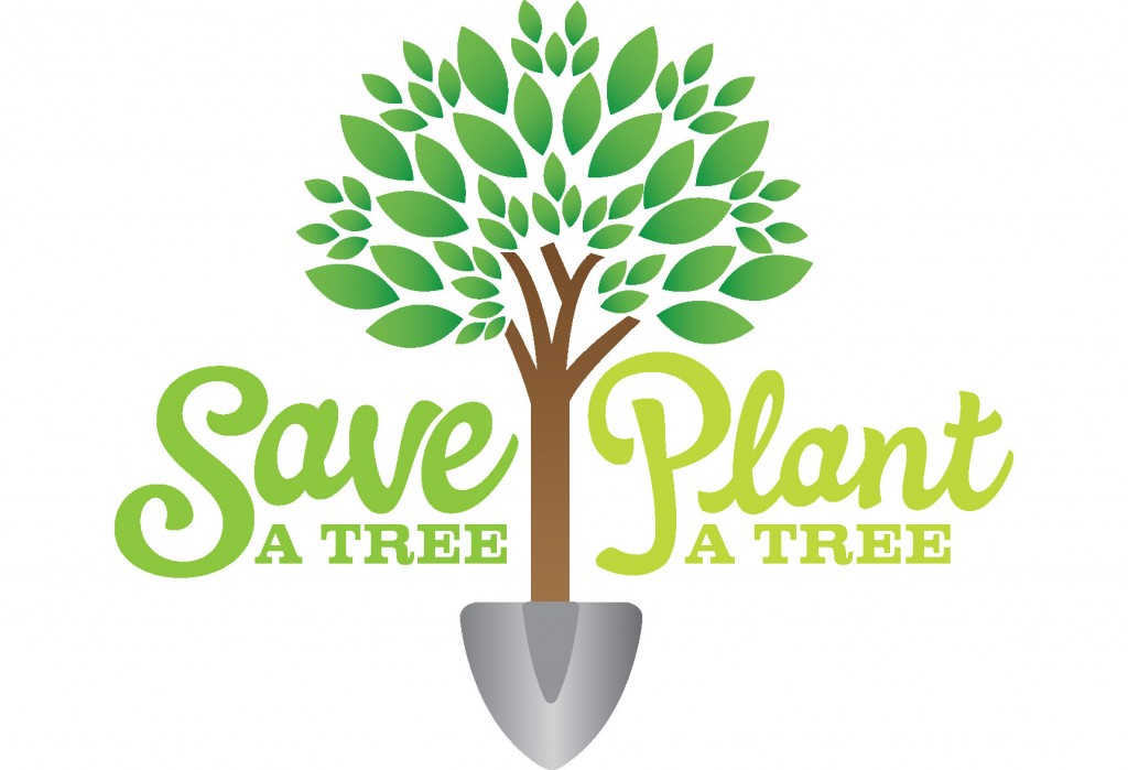trees and the environment essay Learn some key reasons why living trees are important, necessary, and valuable to our very human existence a tree's importance and environmental benefit.